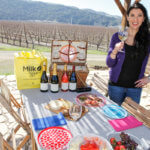 How to Pack a Wine Picnic- My Favorite Essentials